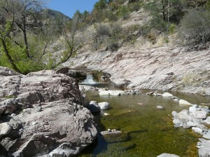 turkey creek hot springs in the gila wilderness