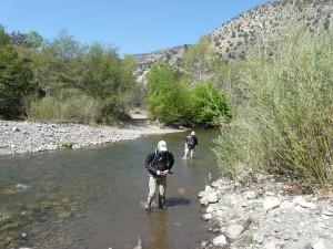 Turkey Creek, Gila Wilderness, New Mexico