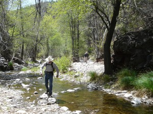 Turkey Creek Hot Springs, Gila Wilderness