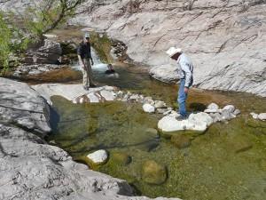 Turkey Creek Hot Springs pools