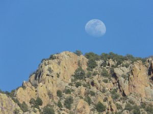 moon over gila wilderness