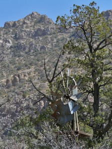 Old Windmill in Gila National Forest