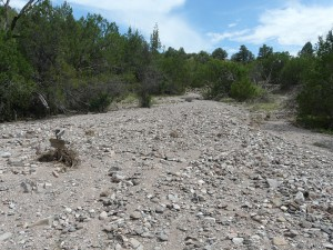 Outwash on Dry Wash Trail