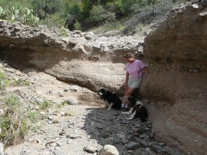 Dry Wash Trail at Casitas de Gila