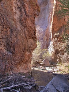 The Narrows in Lower Part of Canyon