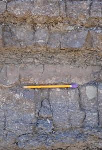 sandstone breccia beds