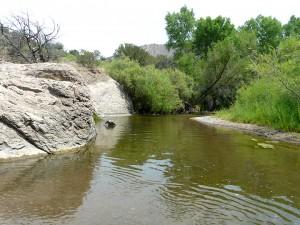 Swimming Hole in Gila River near Silver City, NM