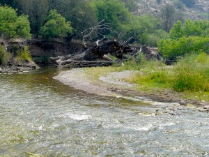 Gila River in Burro Mtns in New Mexico