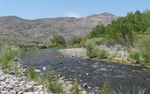 gila river new mexico