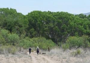 Gila Riparian Preserve New Mexico