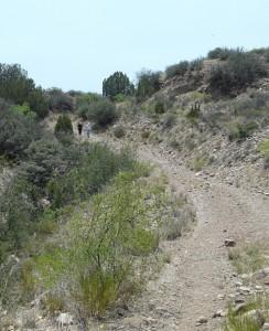 Gila Riparian Preserve, New Mexico