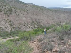 San Francisco River Canyon New Mexico