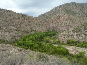 San Francisco River Canyon New Mexico