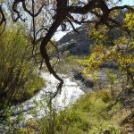 fall on Bear Creek at Casitas de Gila Guesthouses
