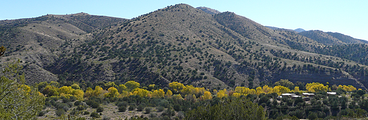 fall color in southwest new mexico