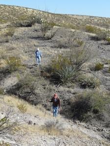 desert terrain southwest New Mexico