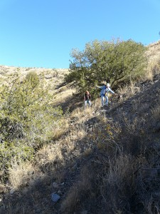 hiking near Blue Creek