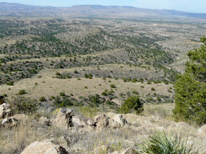 southwest new mexico landscape