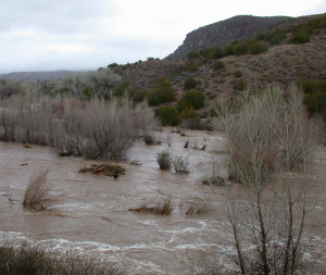 Bear Creek floods