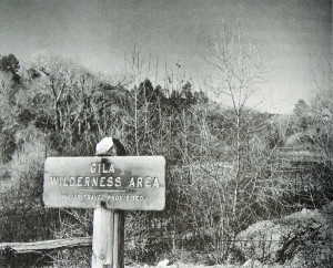 Through the efforts of life-long forester, ecologist, and environmentalist Aldo Leopold, the Gila Wilderness became the first Wilderness Area within the National Forest system on June 3, 1924.