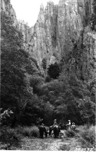 Appreciation of the Forest Primeval—Recreational horseback riding in the Gila Wilderness in 1922.
