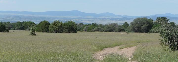 Burro Mountains New Mexico
