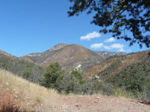 Mogollon Mountains New Mexico