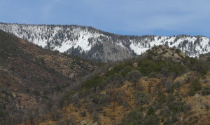 Sacaton Mountain Gila Wilderness