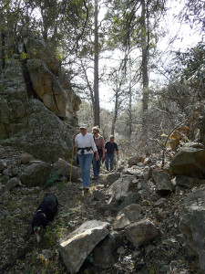 Gila Forest hiking trail