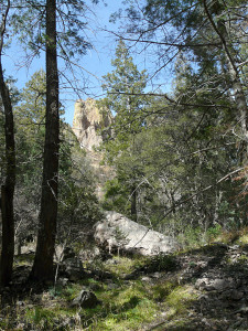 hiking in the Gila