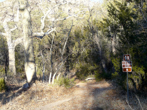 Gila National Forest Trail 201