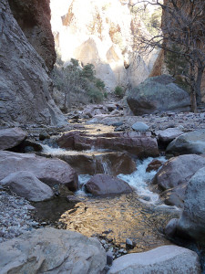 In the shadowed canyons, Mineral Creek flows golden in the reflected morning light.