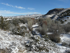 overnight snow in the Gila