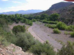 Bear Creek 2001
