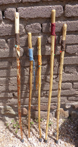 yucca walking sticks
