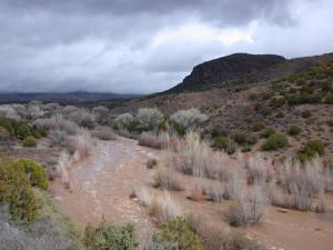 2005 flood on Bear Creek