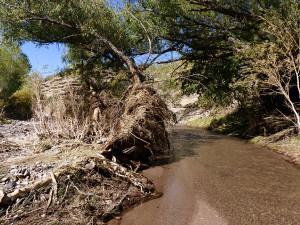 southwest flash flood