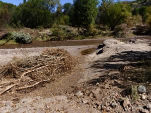 flash flood southwest New Mexico