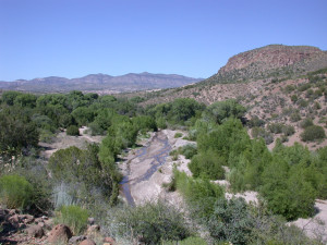 2005 Flood