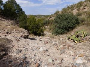 southwest new mexico dry wash