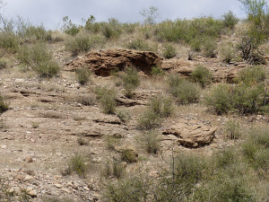 gila conglomerate