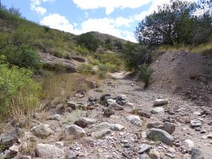 dry wash trail