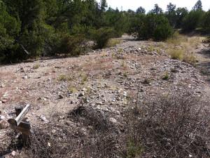 Bear Creek Silver City New Mexico