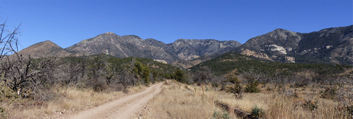 Mogollon Mountains