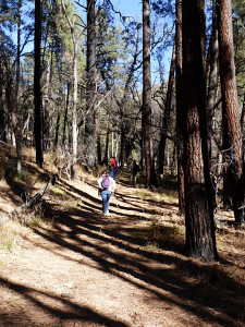 hiking near Silver City New Mexico