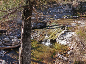 waterfall in Gila Wilderness