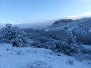 snow in southwest new mexico