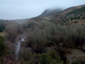 gila wilderness winter