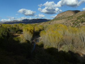 fall in the Gila Wilderness