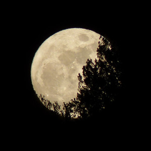 full moon in new mexico